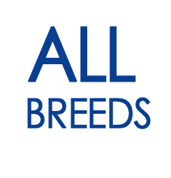 all breeds eng.png